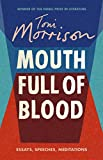 Mouth full of blood : essays, speeches, meditations